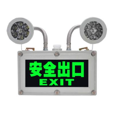 乐倪雅带蓄电池应急灯-2